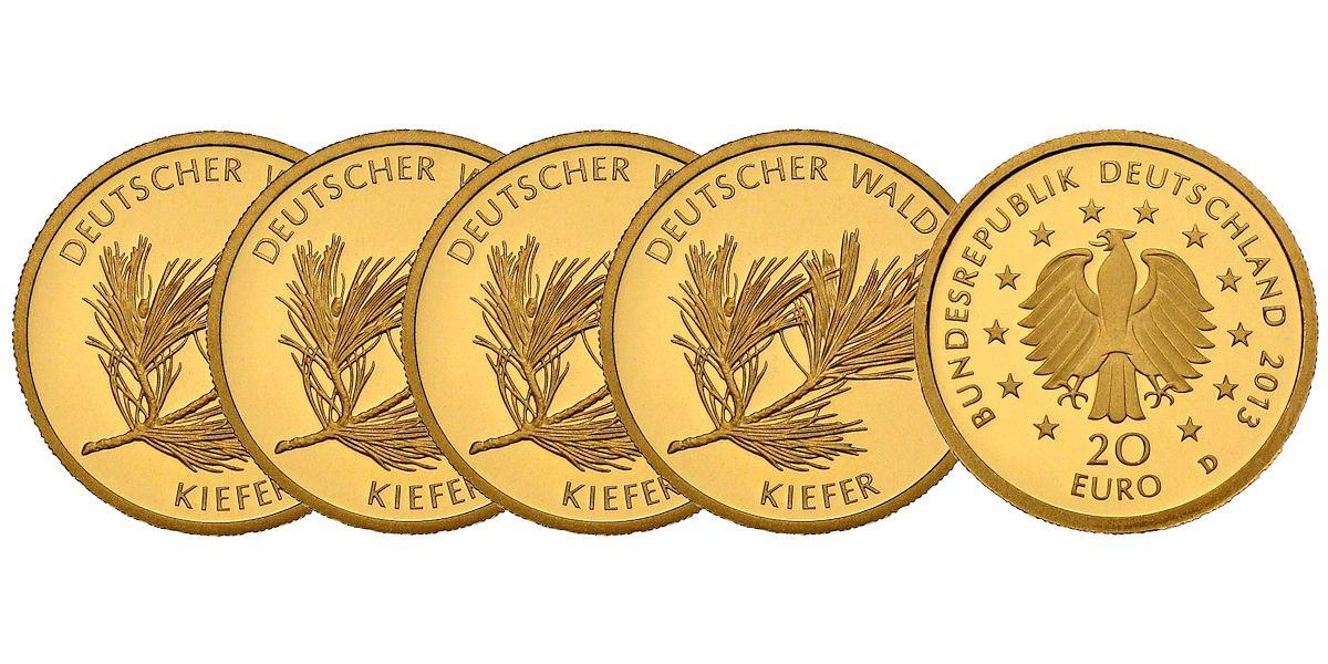 Satz 20 Euro Gold Deutscher Wald Kiefer Brd 2013 Muenzenladende