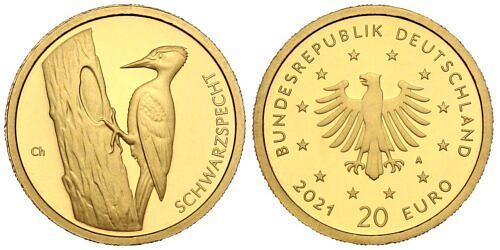 20-euro-gold-heimische-voegel-schwarzspecht-brd-2021